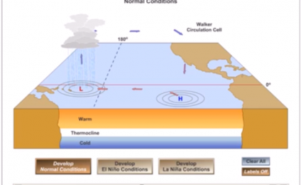 What is El Nino and La Nina? How are they formed? Explanation and diagrams (english version)